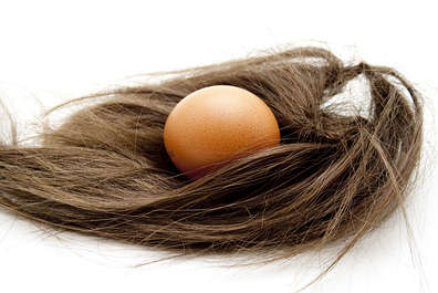 Egg and hair
